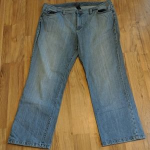 Venezia Plus Size Straight Leg Jeans